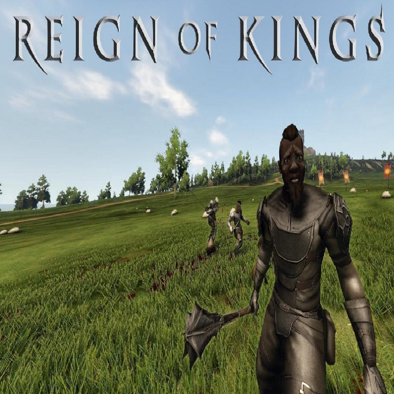 Reign of Kings Server Sydney Dedicated Server